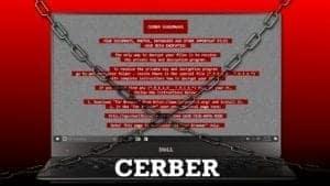 Cerber virus