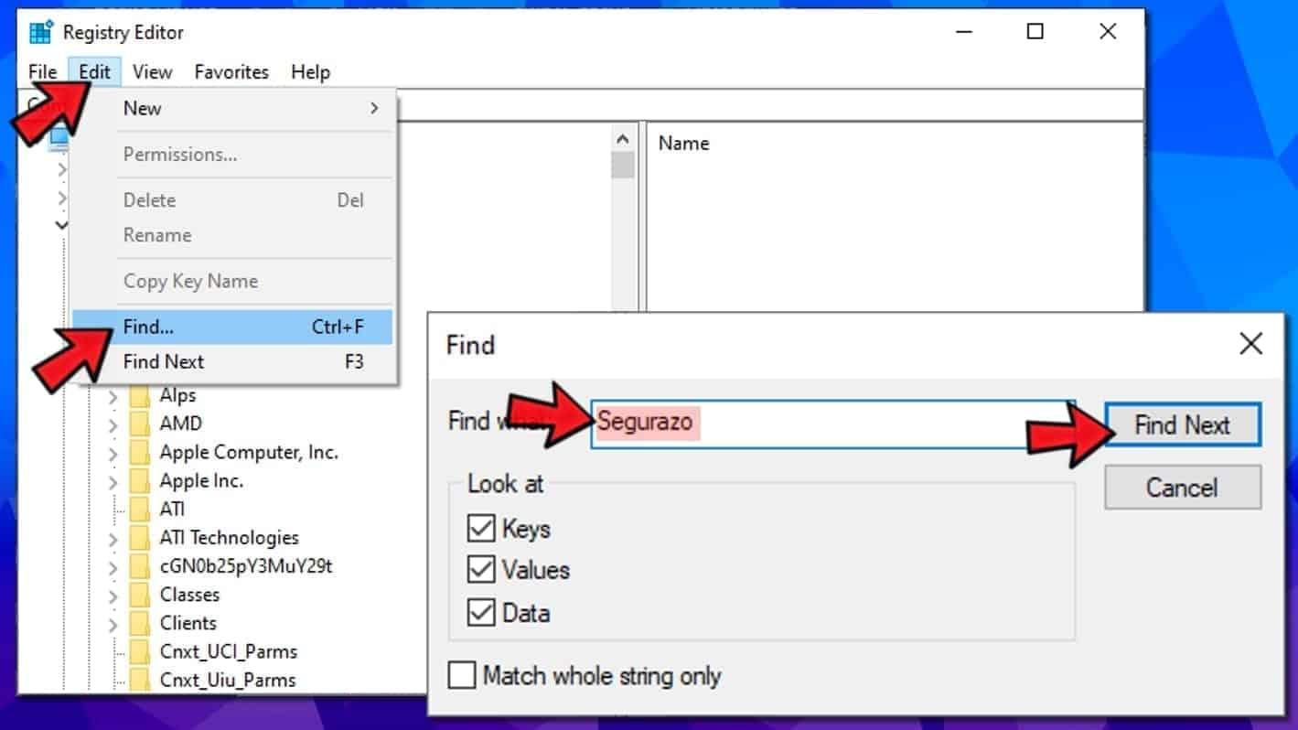 search windows registry for segurazo remains